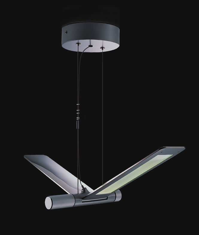 Hanglamp Led Seagull Suspension 2